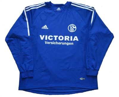FC Schalke 04_Mike Hanke01